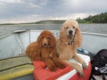 Charlee & Penny Boating
