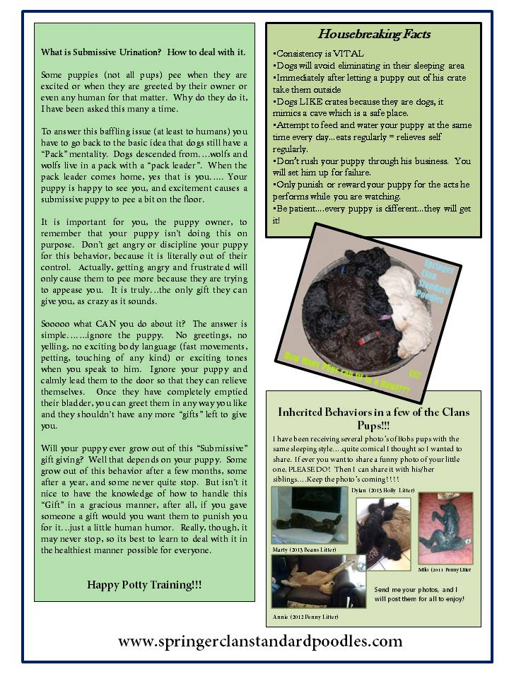 2014.5-6 The Clans Newsletter - Potty-Crate Training for Dummies (2)