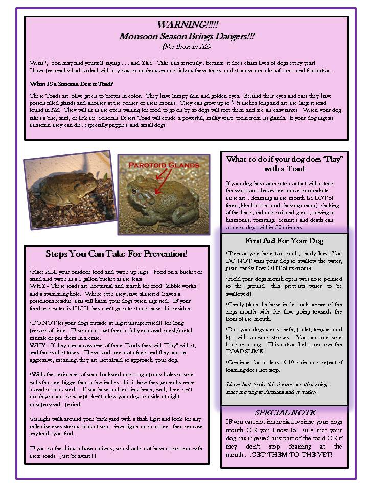 2014.7 The Clans Newsletter - Introducing Your Puppy & Toad First Aid (3)